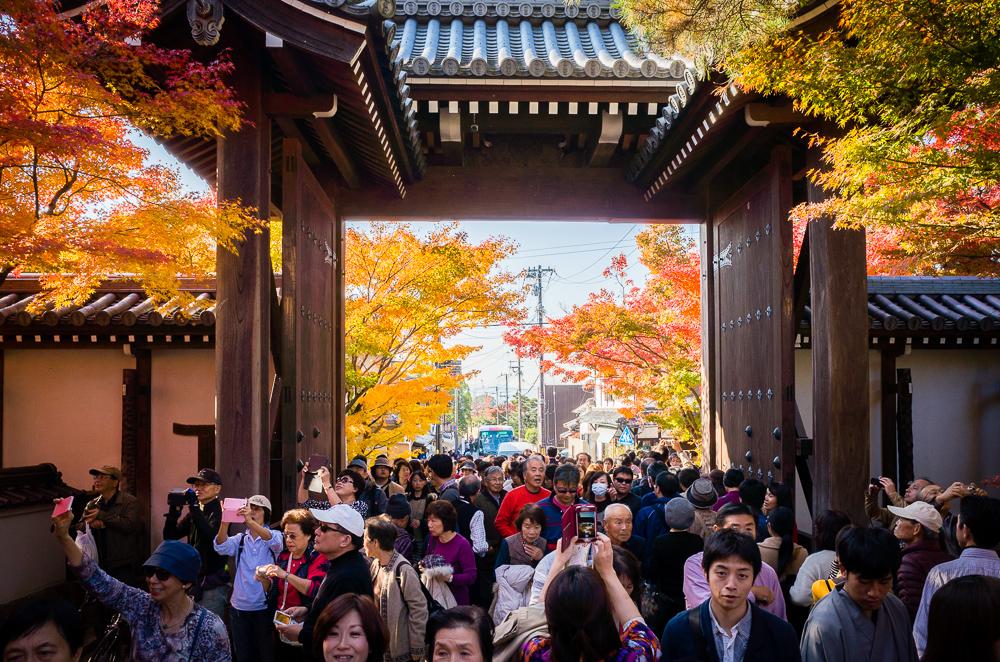 Kyoto (išpardavimas prasidėjo!)