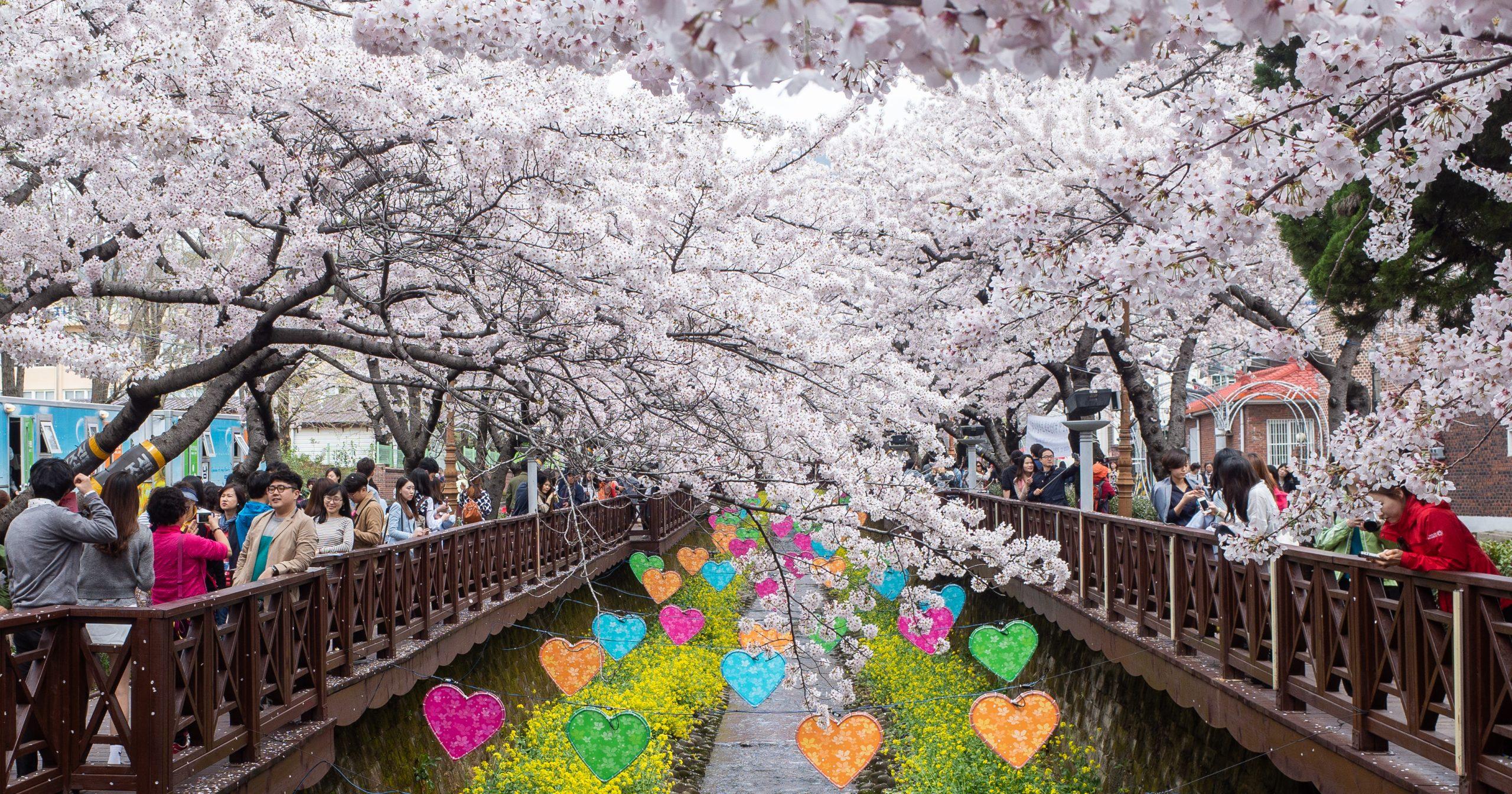Korea2015-011616-1